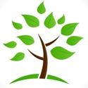 CCC Tree Logo